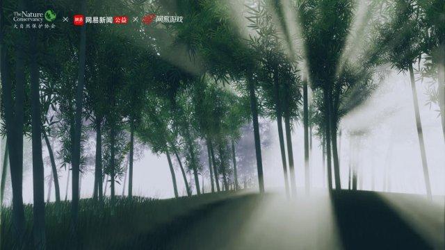 侠客独立手游《青璃》开放安卓下载 全平台玩家体验