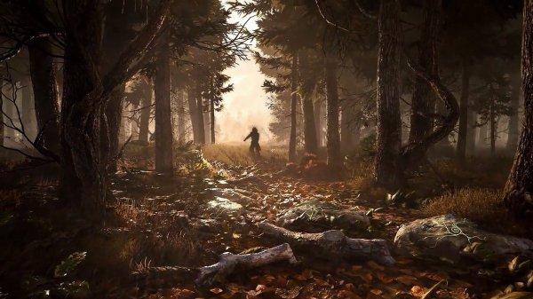 《贪婪之秋》项目经理爆料 游戏将有两种模式玩法